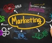 Robusta tuyển dụng thực tập sinh Marketing