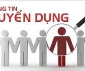 Công ty TNHH vi tính Nguyên Kim Chính Nhân tuyển nhân viên khối kinh doanh Hosting-Domain